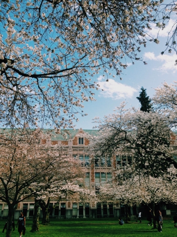 Smith Hall in Bloom